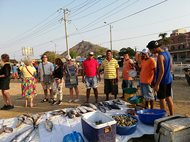 Visiting a fish market during our art workshop on the Caribbean