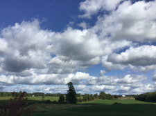 View of landscape during our art workshop in the Ottawa region